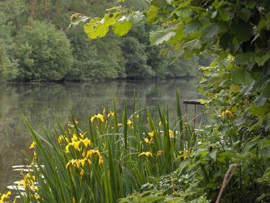 le LOIR au bout de mon jardin, un petit coin idyllique.....