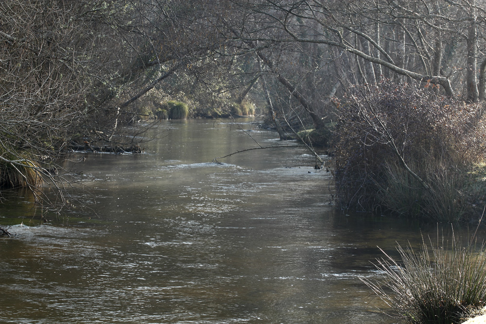 le long de la rivière !!!