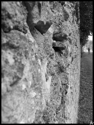 Le long du mur