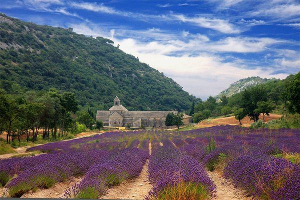 Le Luberon - Abbaye de Sénanque