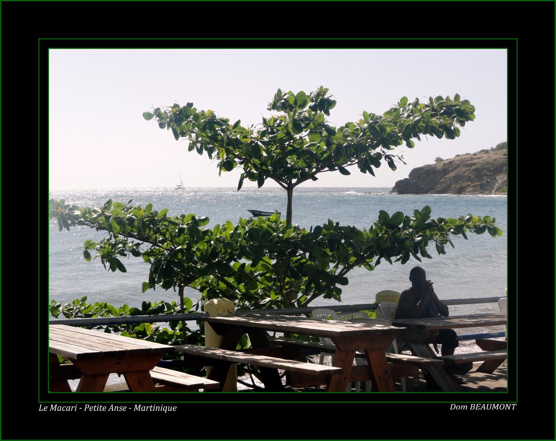 Le Macari - Petite Anse - Martinique