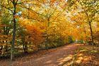 Le mail en automne