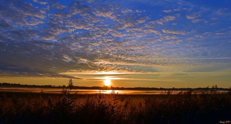 Le marais en octobre