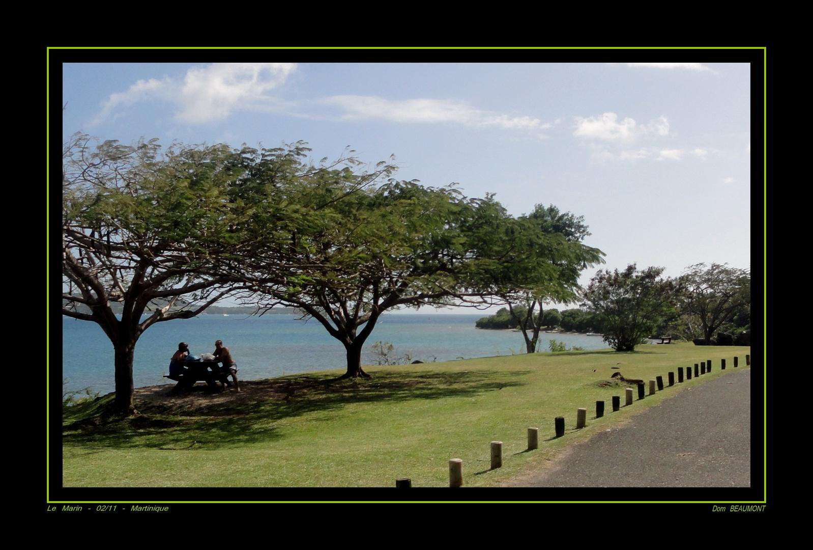 Le Marin - 02/11 - Martinique