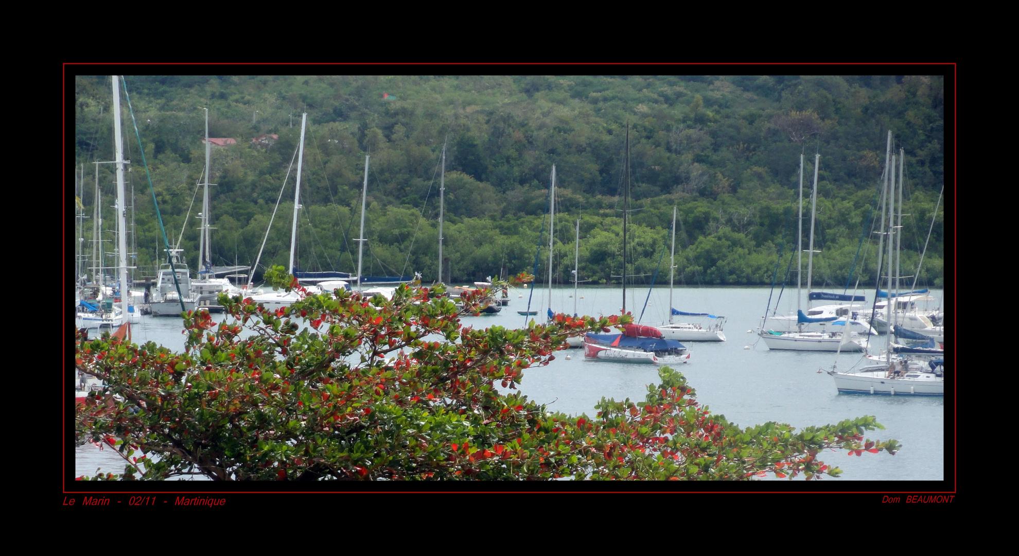 Le Marin - Février 2011 - Martinique