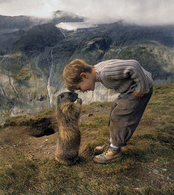 Le marmotte amiche 5