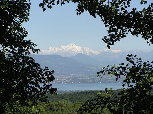 Le massif du Mont-Blanc vu de Vesancy