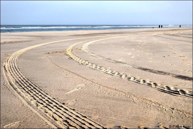 Le matin, sur la plage de Egmond aan Zee