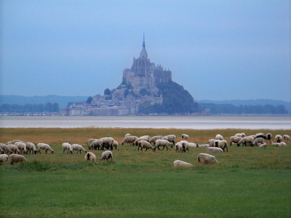 Le Mont-Saint-Michel vu des prés salés