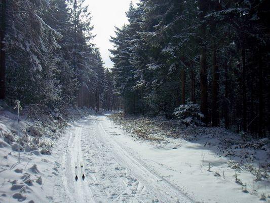 le Morvan sous la neige...