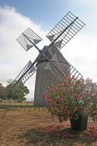 le moulin de Carlucet, Lot