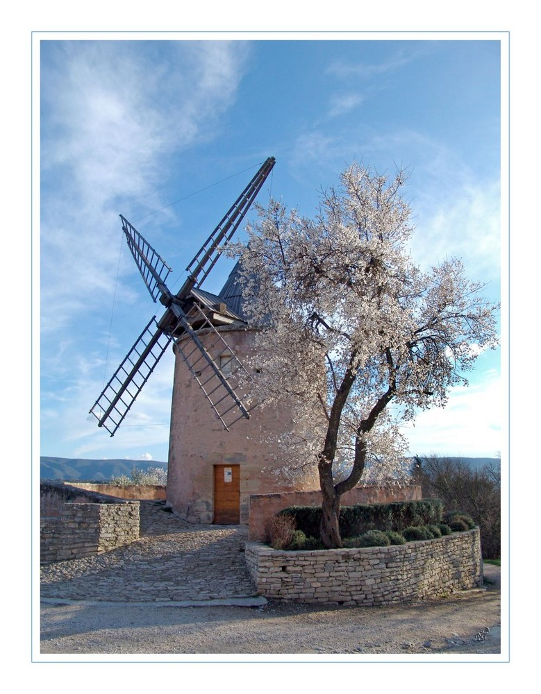 Le moulin et l'amandier