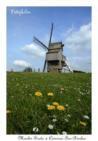 Le moulin Soete