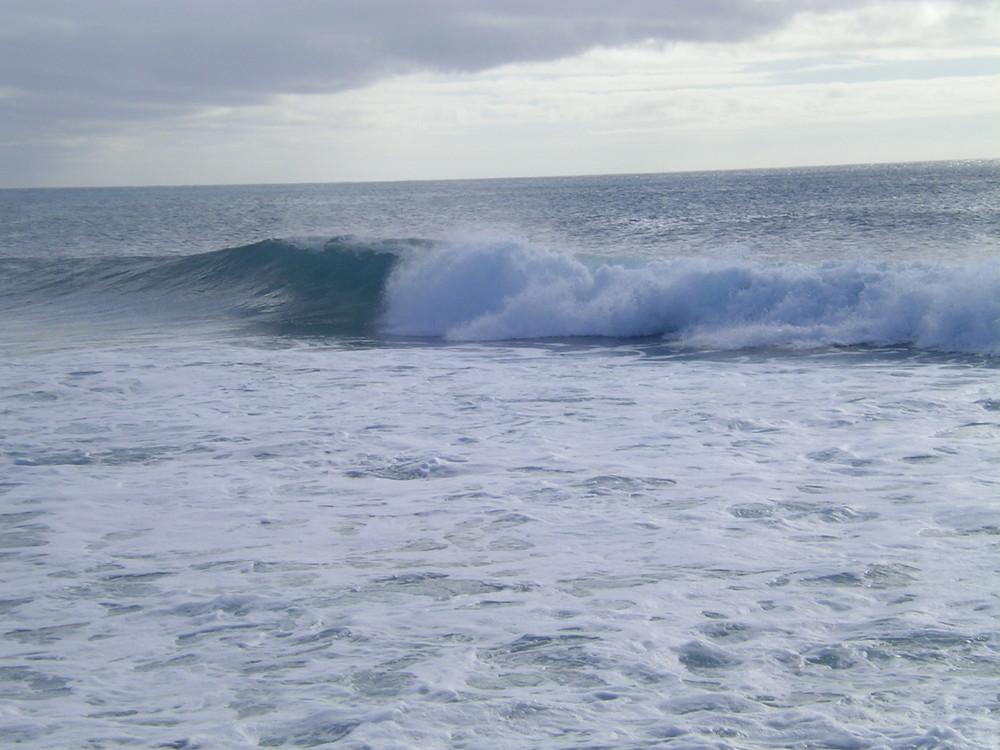 Le onde dei surfisti