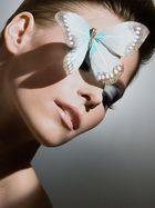 *le papillon*