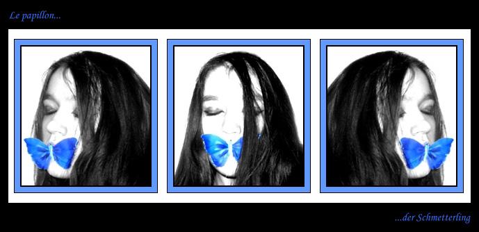 Le papillon I
