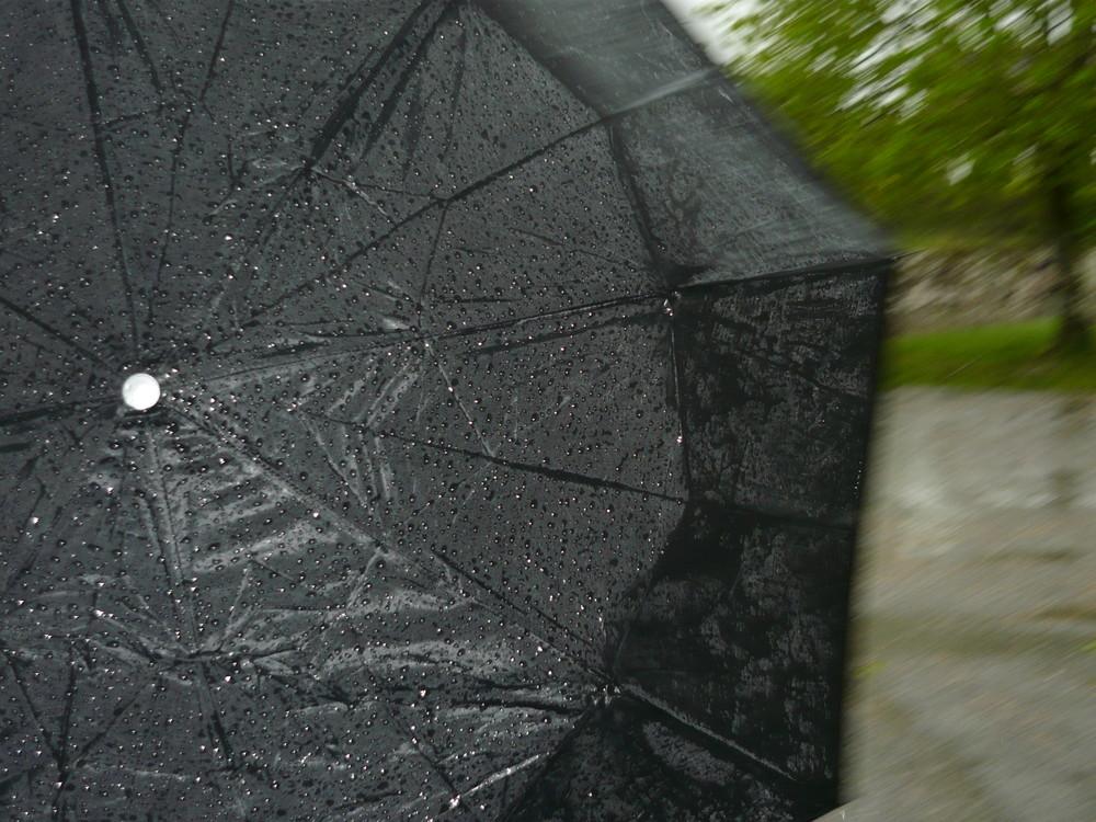 Le parapluie