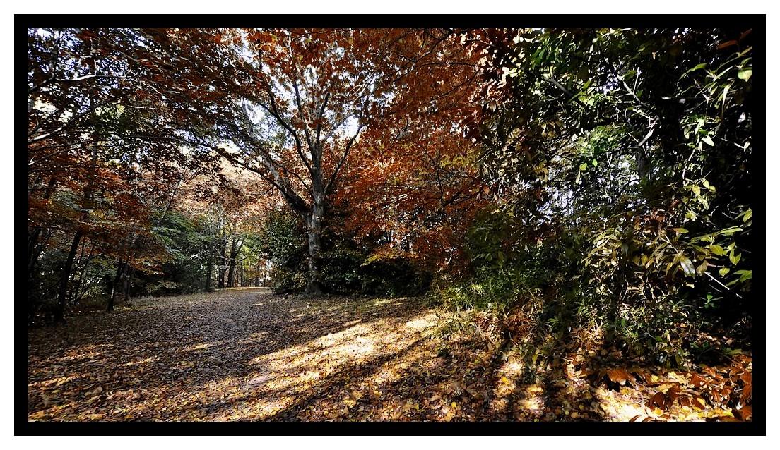 le parc de Kérihuer