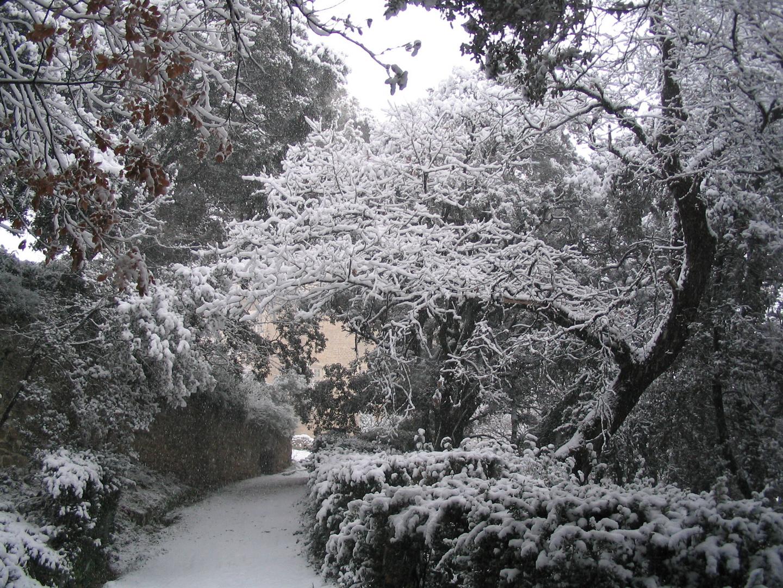 Le parc du château de Suze