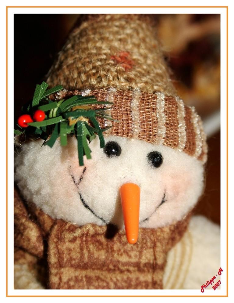 le petit bonhomme de neige en peluche