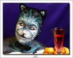 Le petit chat d'Alice -2 .(Stéphanie automaquillage) .