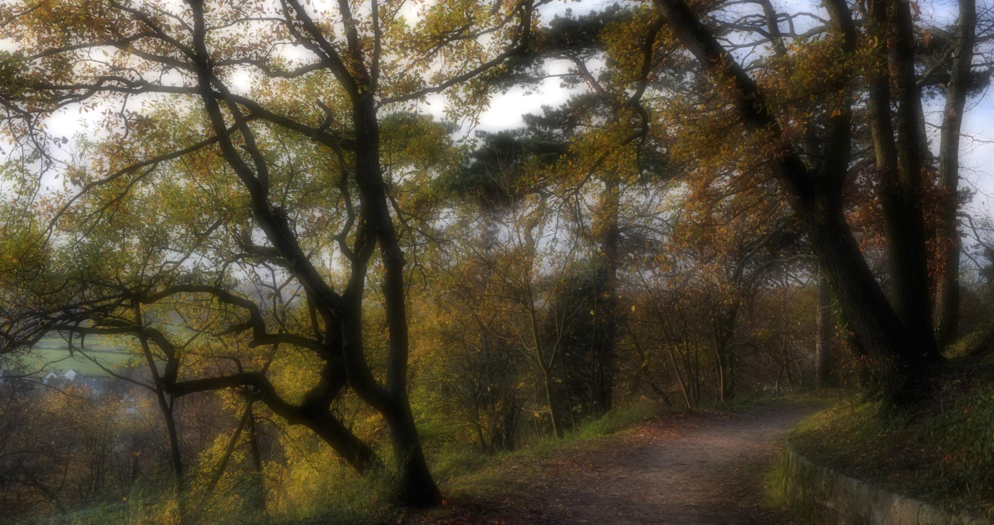 Le petit chemin.....