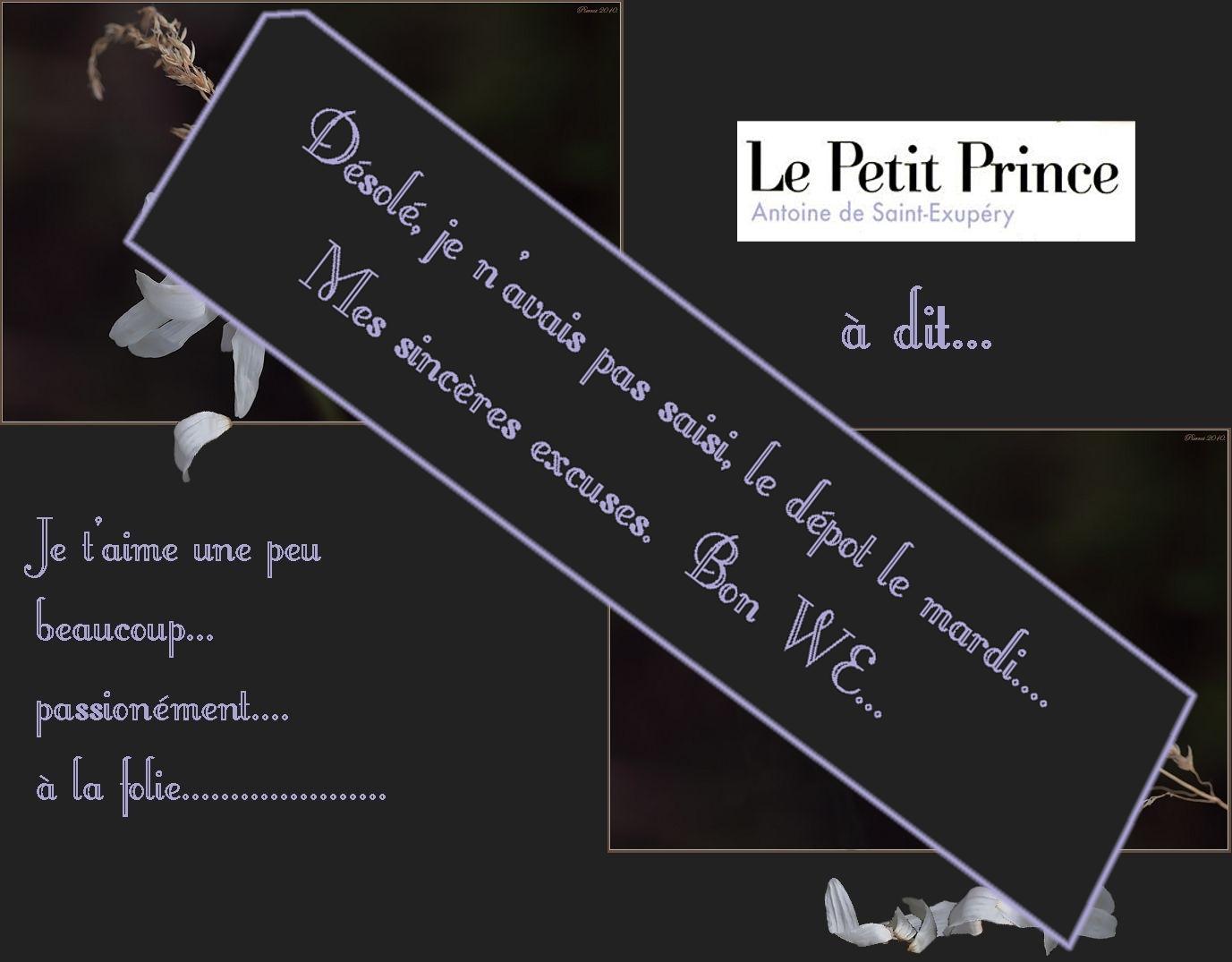 Le petit Prince avait dit .....