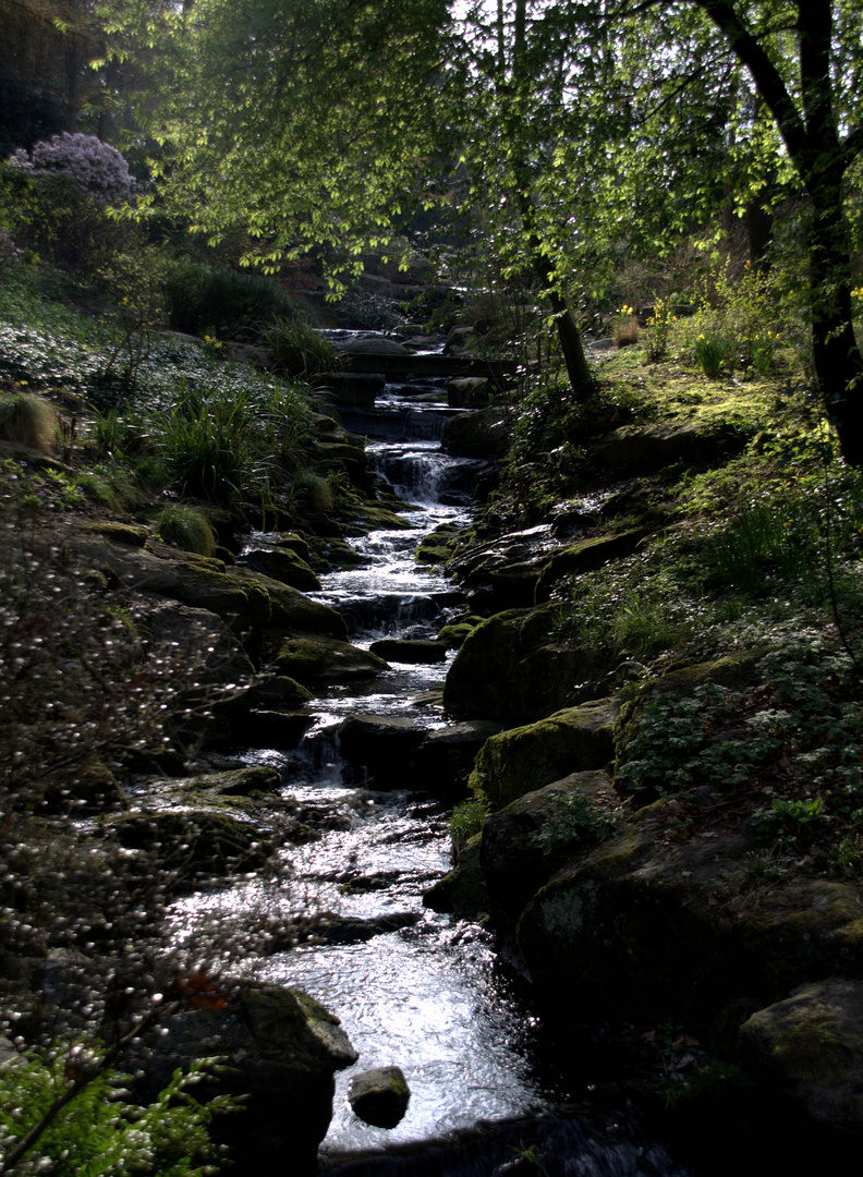 Le petit ruisseau -