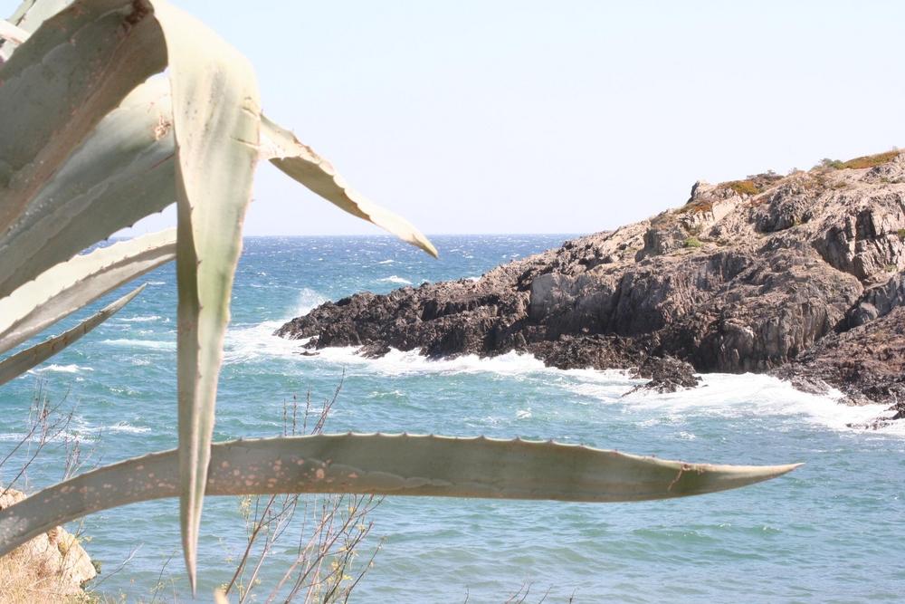 Le Pic de la mer