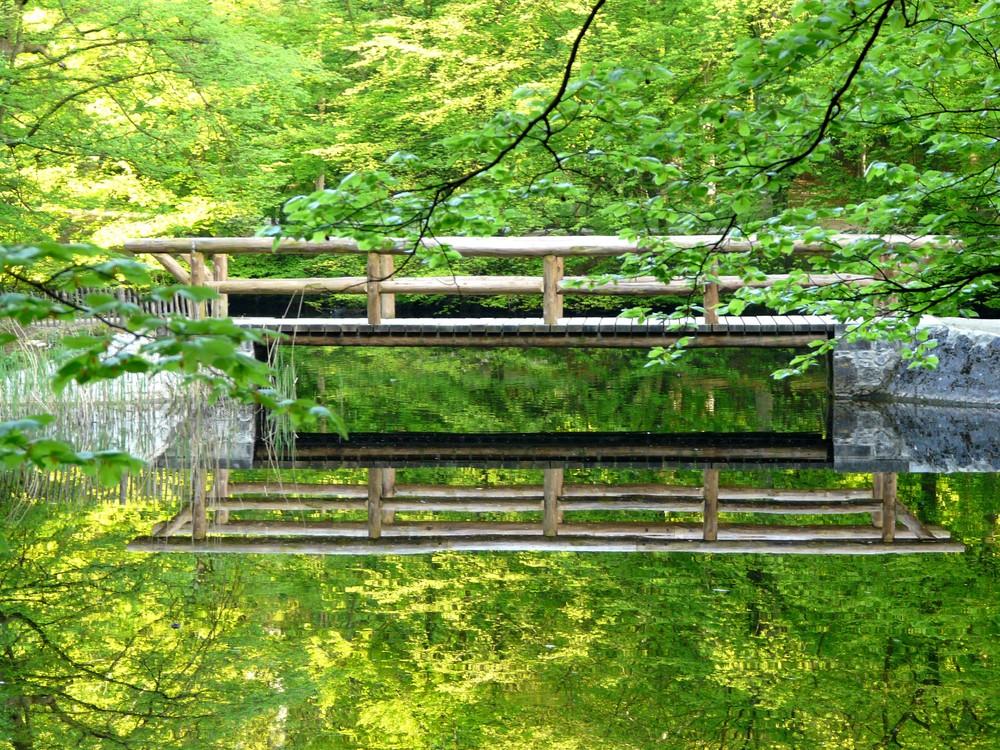 Le pont aux étangs des Enfants Noyés - Forêt de Soignes