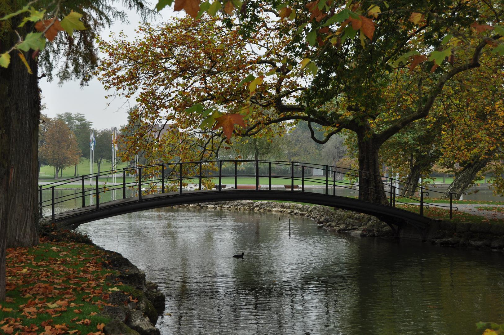 Le pont en automne!