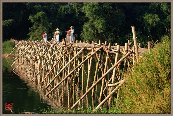 Le pont en bambou.