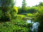 """"""" Le pont Japonais """" de Claude Monet"""