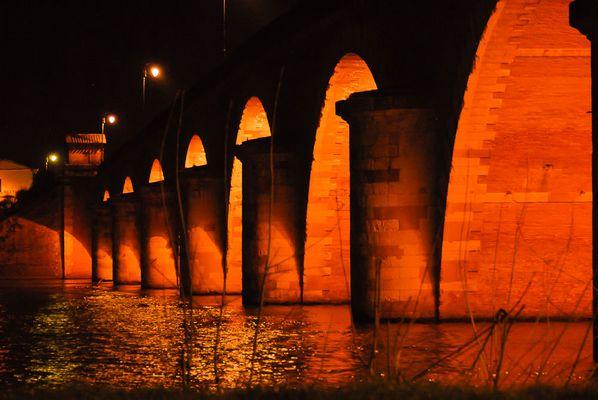 le pont napoléon a Moissac (82)