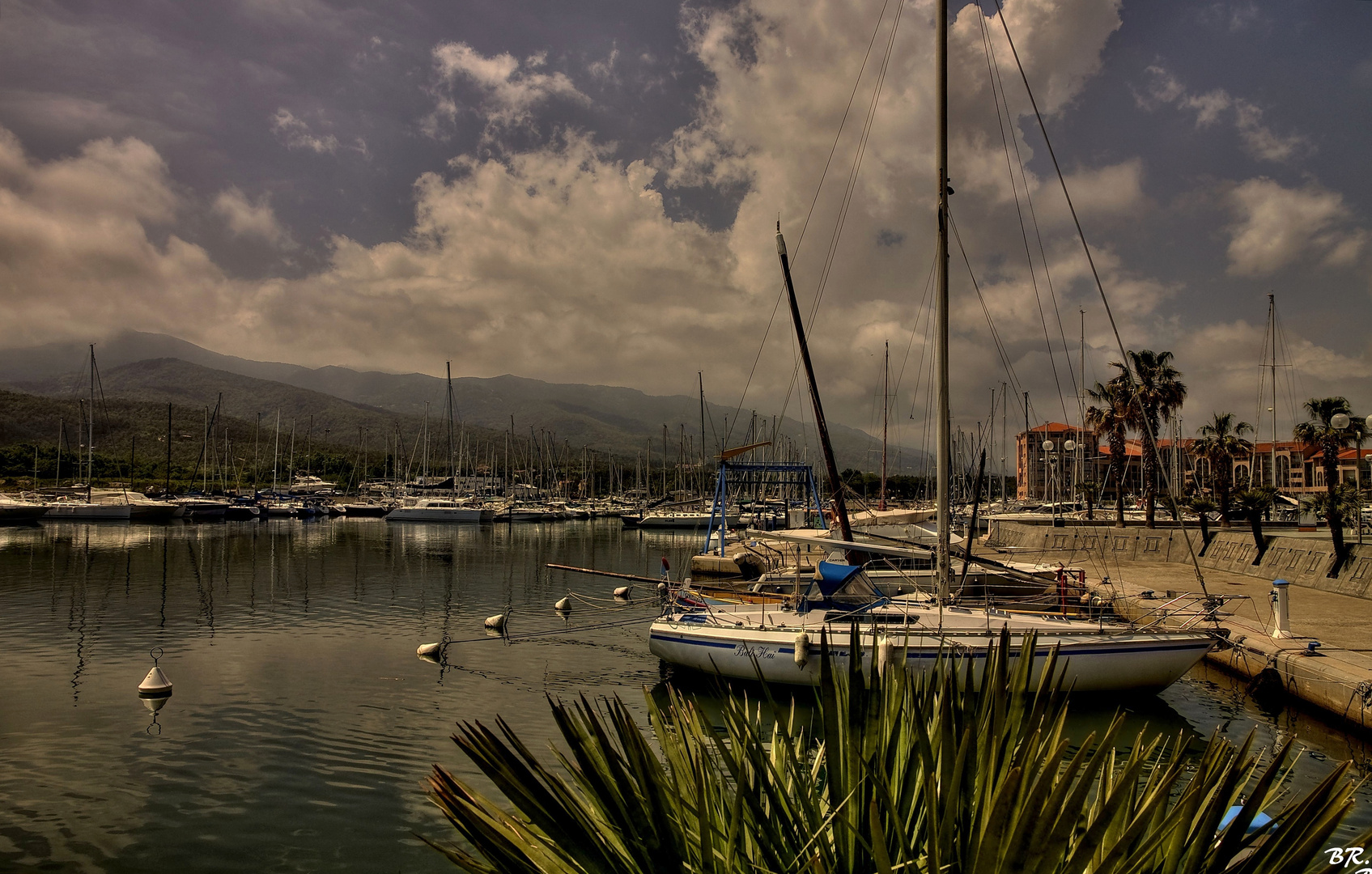 le port d'Argeles