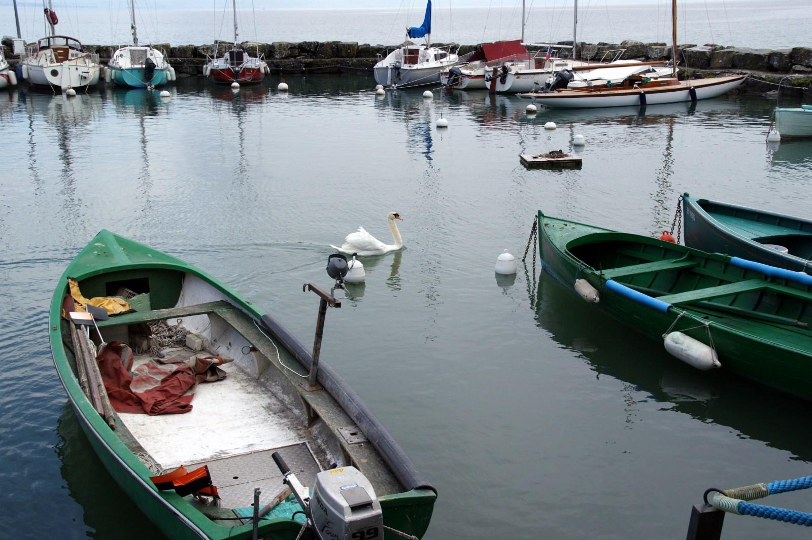 Le port de plaisance d'Yvoire (Haute-Savoie)