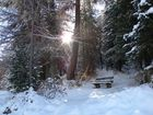 Le première neige / Der erste Schnee / La primera nieve..03