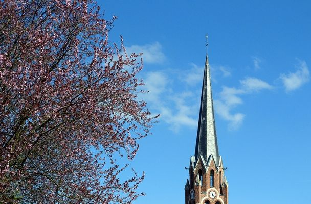 Le printemps à Mérignies