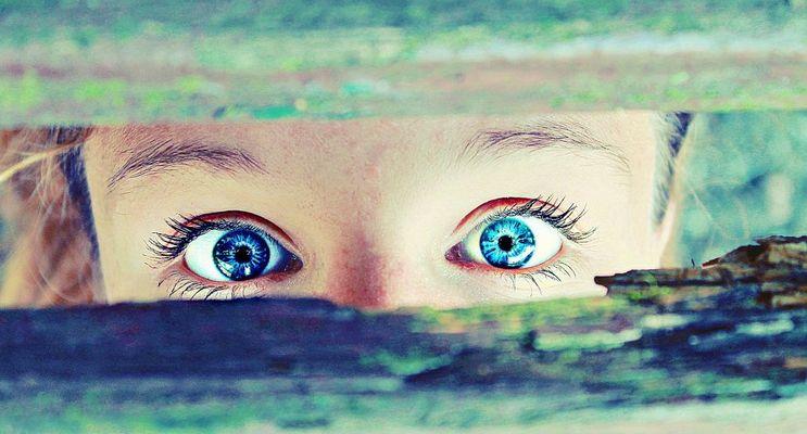 le regard est la porte de la réussite!