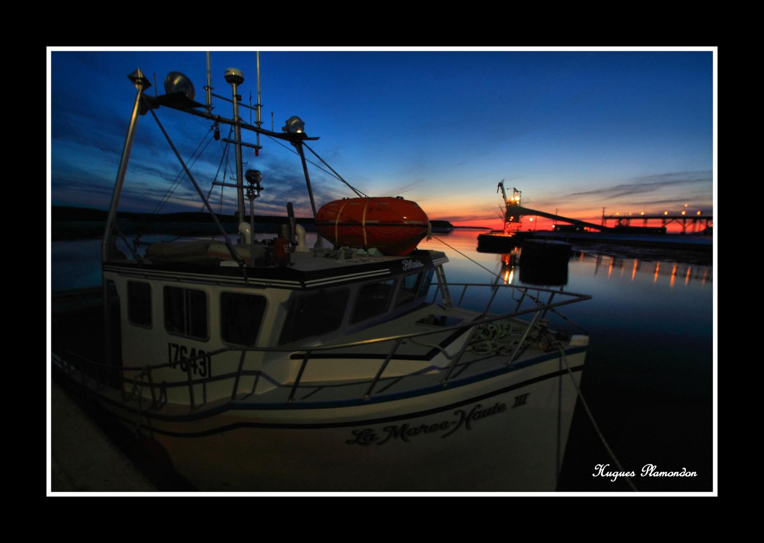 Le retour de la pêche sur la mer