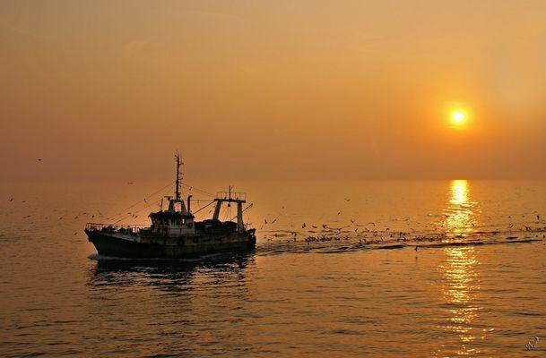 Le retour du pêcheur...