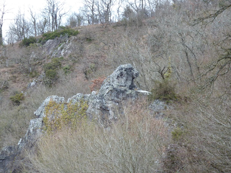 Le rocher du lion