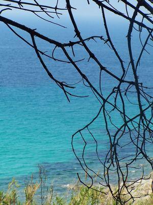 île rousse (corse)