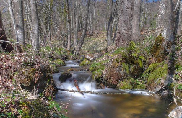 Le ruisseau de l' Arse, Ariège