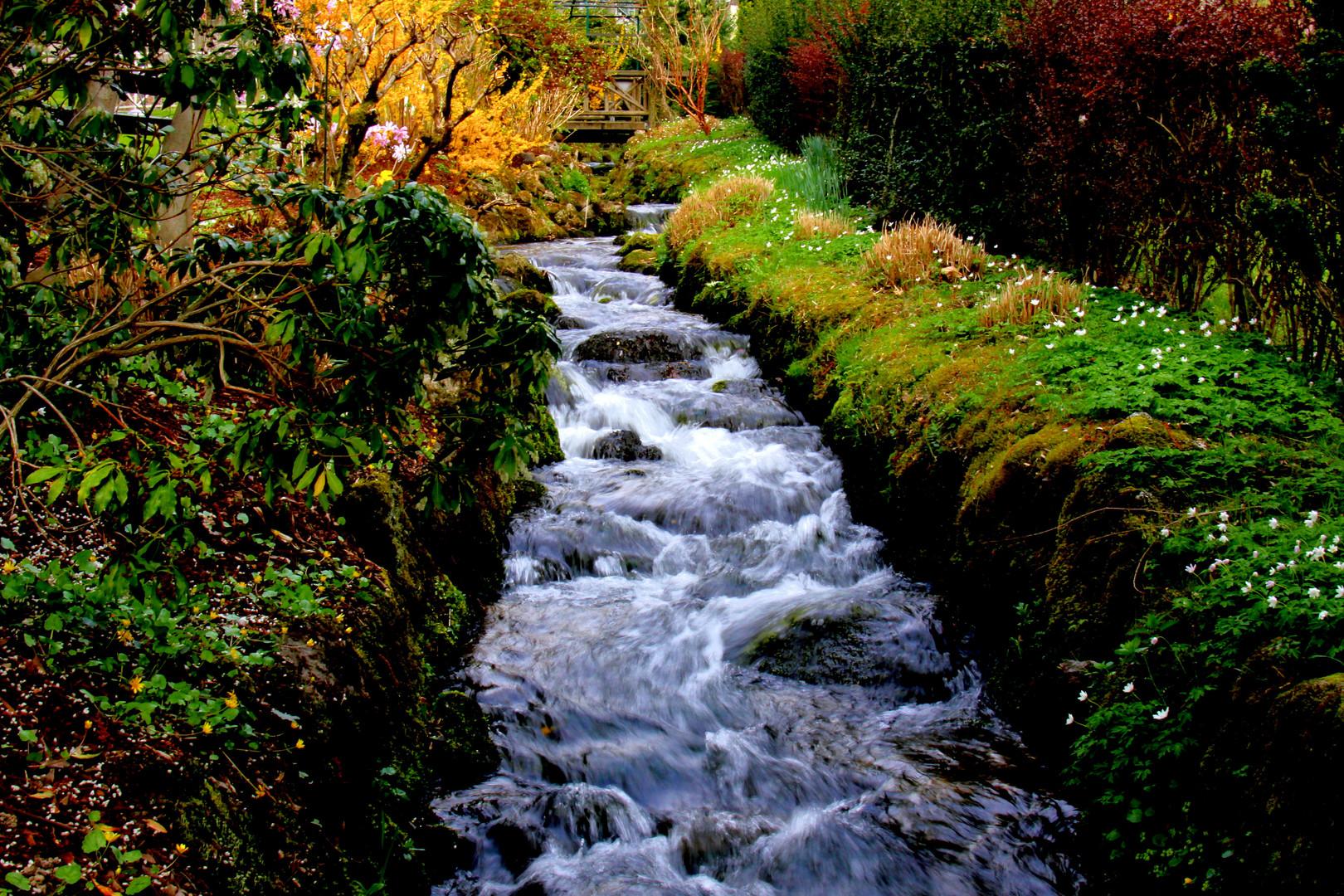 le ruisseau gazouille!