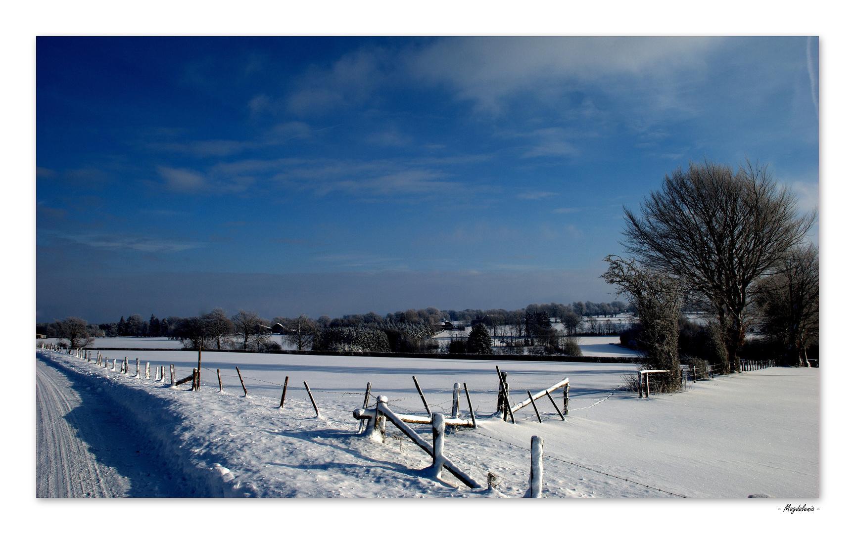 Le silence de l'hiver -2
