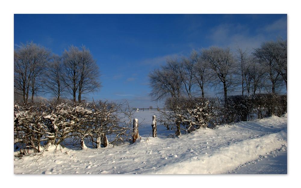 Le silence de l'hiver -3