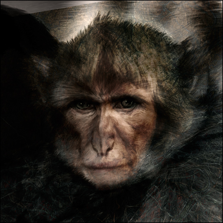 Le singe triste