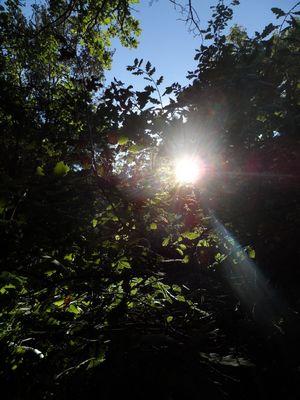 le soleil rappel sa présence