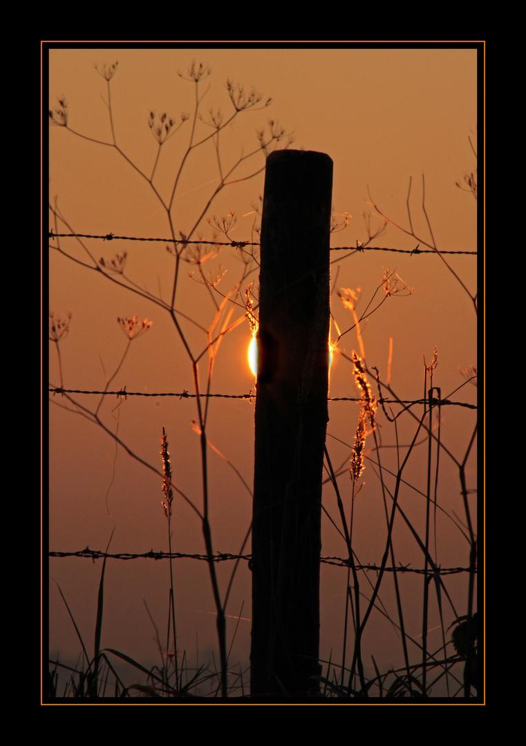 Le soleil se cachant